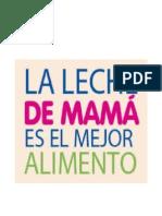 lactancia materna.doc