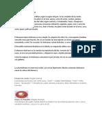 COMIDA TÍPICA DA BOLIVIA - TRABALHO DE ESPANHOL.docx