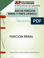 PRUEBAS DE FUNCION RENAL Y PERFIL LIPIDICO.pptx