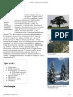 Drzewo – Wikipedia, wolna encyklopedia.pdf