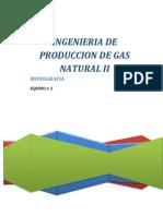 INGENIERIA DE PRODUCCION DE GAS NATURAL II.pdf
