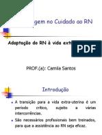 ADAPTAÇÃO EXTRA UTERINA.pdf