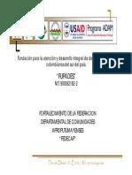 PLAN DE DESARROLLO AFRO 2008 2019.pdf