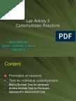 Lab-Activity-31.ppt