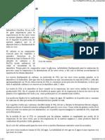 Ciclo del carbono.pdf