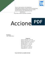 ACCIONES trabajo completo[1].doc