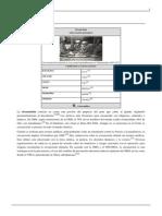 CIRCUNCISIÓN Wikipedia.pdf