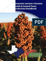 South & Central Texas SORGHUM production handbook.pdf