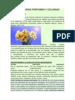HAZ TUS PROPIOS PERFUMES Y COLONIAS NATURALES.docx