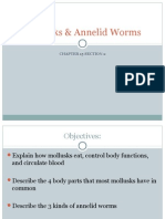 Mollusks & Annelid Worms Ch15.2 7th