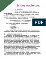 TEMA 2. ÁCIDOS NUCLEICOS.doc