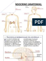 Clase7._HOTMONAS (1).ppt