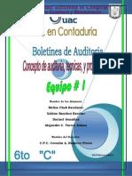 LA AUDITORIA COMO ACTIVIDAD PROFESIONAL (1).docx