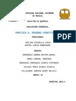 P6. Pruebas Cuantitativas..docx