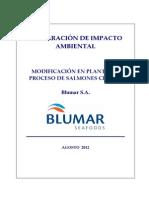 DIA_Planta_Salmones_Chonchi layost.pdf