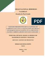 proyecto_tesis_II.docx