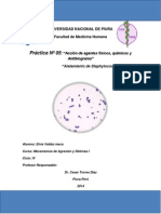 Aislamiento de Staphylococcus.docx