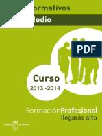 64670-Ciclos formativos grado mediodl.pdf