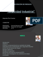 Seguridad Industrial alejandra pino.pptx