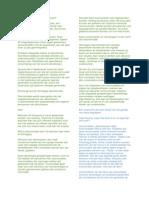 blog opdracht 3 document pagina
