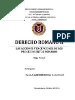 ACCIONES Y EXCEPCIONES.docx