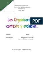 Analisis critico-organizaciones contexto y evolucion.docx