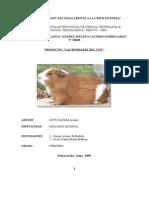 PROYECTO BONDADES DEL CUY.doc