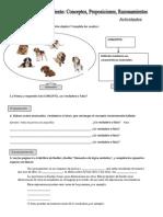 Actividades concepto, juicio y razonamiento.docx