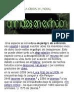 UNA CRISIS MUNDIAL.docx