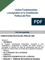 5. Derechos Fundamentales.pptx