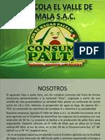 exportacion de palta.pptx