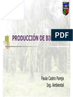 BIODIESEL.pdf