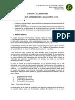 Práctica II Fermentación de etanol-Bioprocesos FUA.pdf