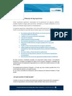 Seguridad en el uso de productos agroquimicos.pdf