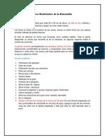 Usos Medicinales de la Manzanilla.docx