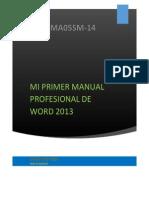 MANUAL PROFECIONAL.docx