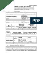 SYLLABUS DE GEOLOGÍA DE YACIMIENTOS MINERALES II.docx