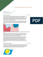 Adobe Illustrator _ Reventado.pdf