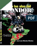 Bajo Las Alas Del Condor - Jose Luis Mendez Mendez