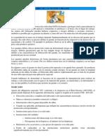 12 manos.pdf