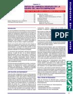 mtacro11 Quemadura Comp..pdf