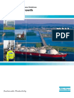 Driving Lng Growth