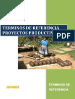 TERMINOS DE REFERENCIA PARA PROYECTOS PRODUCTIVOS.pdf