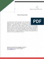 95413_No57-12-Mineria-responsable.doc