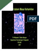 Rps1384444 Slide Obat-obat Dalam Masa Kehamilan