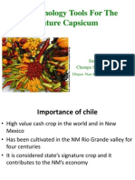 Biotechnology Tools For The Future Capsicum (Bagga).pptx