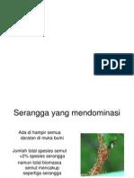 Ekologi semut
