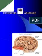 emisferele_cerebrale.ppt