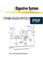 Nutr2-Rumdigestion.pdf