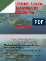 Konservasi Flora Dan Fauna